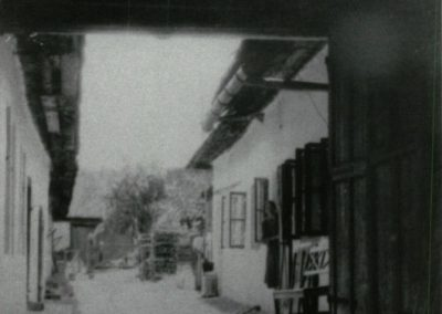julius_waldapfel_dvor_1930